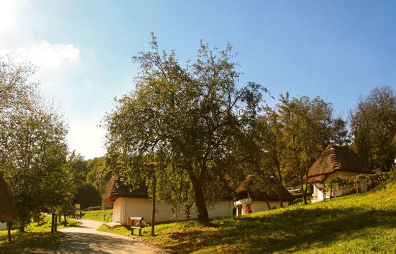 Kellergasse-Heiligenbrunn_778x500