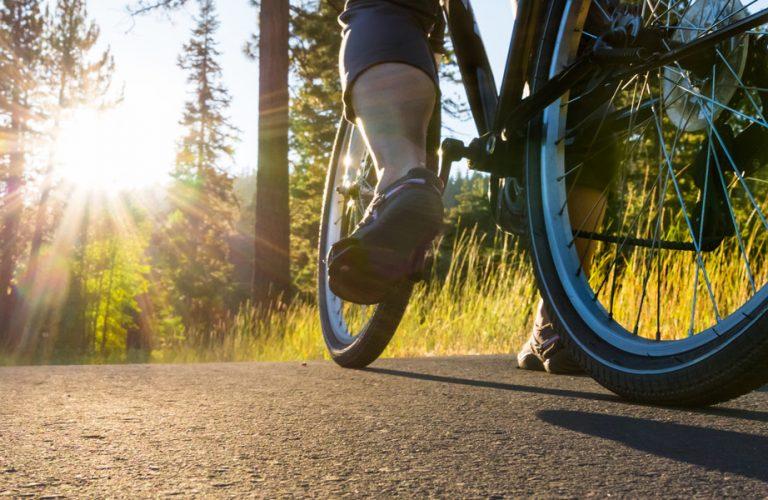 Bike on the asphalt path illuminated by sun.