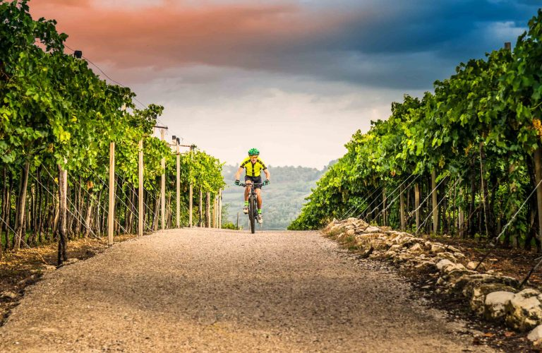Verona, Italy - September 18, 2015: Cyclist pedaling through the hills and vineyards.