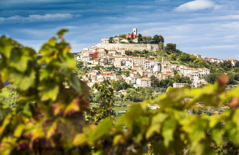 Kroatien, Istrien, Blick durch die Weinberge nach Motovun