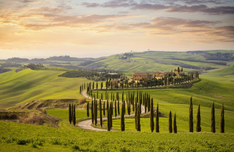 """The Tuscan landscape, depicted in countless works, has been """"built"""" by generations of farmers who have sought together utility and beauty, variety of shapes and colors. In the geography of this region, more than in the others, the imprint of history is visible. Italy"""